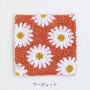 編み物 手織り機 ダルマ「絵織亜」 絵織糸 マーガレット 【メール便可】