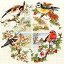 刺繍 刺しゅう輸入キット Anchor Birds And Seasons 【ネコポス可】