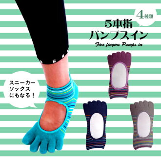 Rare! Five fingers パンプスイン! Border babe ★ all 4 colors