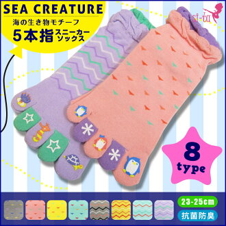 Five finger socks sea creatures motifs five finger sneakers socks characters Penguin sneaker socks five finger socks grey pink blue purple yellow 汗取り health chill take