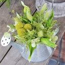 レラ〜風〜【送料無料】◆プリザーブドフラワー・アレンジ/ギフト・お祝い・お誕生日・お礼・ホワイトデー・プレゼント・母の日・敬老の日・結婚祝い・新築祝い