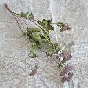 アゲラタム パープル / ドライフラワー 北海道産 インテリア ナチュラル 紫 花材 素材 材料 手作り