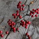 サンキライの実 赤 ◆ドライフラワー 材料 実もの 赤い実 レッド / 花材 リース 手作り 材料 素材 ナチュラル インテリア