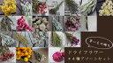 ドライフラワー * 4種アソートセット / ドライフラワー 北海道産 インテリア ナチュラル インテリア アレンジメント 花材