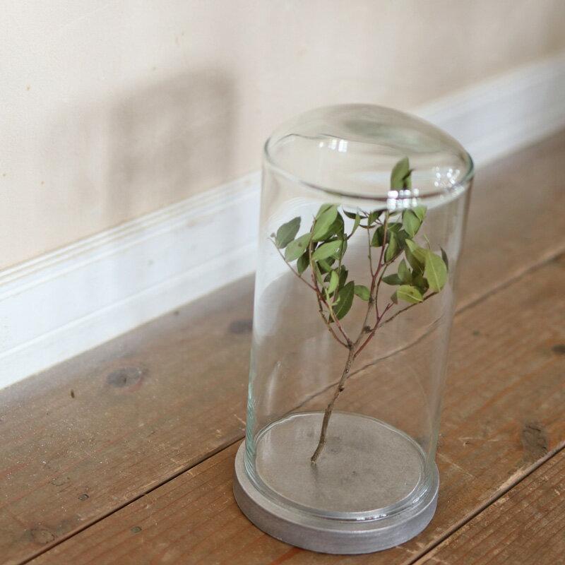 ディスプレイドーム キャストアイアンL / アンティーク調 インテリア ブロカント 店舗ディスプレイ ナチュラル ガラスドーム