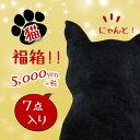 【猫・福箱】 福箱/福袋/ハッピーボックス/抱き枕/黒猫/ネコ/福袋2017