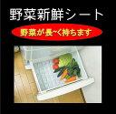 野菜新鮮シート×【2個】【送料100円】【野菜室に敷いて野菜の雑菌の繁殖を抑えて鮮度保持します】50×35cm 冷蔵庫シート 冷蔵庫マット 食器棚シート 鮮度保持 冷蔵庫 野菜 脱臭剤 消臭 保冷剤
