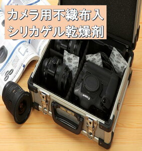 デジタル レスカメラ