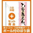 【セット商品】3m・3段伸縮のぼりポール(竿)付 のぼり旗 ひなあられ (21376)