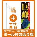 【セット商品】3m・3段伸縮のぼりポール(竿)付 のぼり旗 巨峰種なし (SNB-1369)