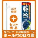 【セット商品】3m・3段伸縮のぼりポール(竿)付 のぼり旗 藤稔種なし (SNB-1374)