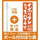 【セット商品】3m・3段伸縮のぼりポール(竿)付 のぼり旗 ナポリタンスパゲティ 名古屋名物 (橙) (SNB-3534)