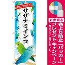 のぼり旗 サザナミインコ (業種別/ペットショップ/鳥