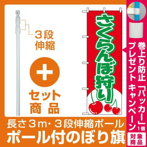 【プレゼント付】【セット商品】3m・3段伸縮のぼりポール(竿)付 のぼり旗 (2230) さくらんぼ狩り