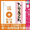 【プレゼント付】【セット商品】3m・3段伸縮のぼりポール(竿)付 のぼり旗 ひなあられ (21376)