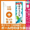 【セット商品】3m・3段伸縮のぼりポール(竿)付 のぼり