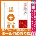 【プレゼント付】【セット商品】3m・3段伸縮のぼりポール(竿)付 のぼり旗 特別な贈り物 (SNB-2797)