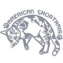 猫オリジナルイラストアメリカンショートヘアー 猫カッティングステッカー 2