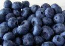 アントシアニンたっぷり!加工や保存に便利な冷凍の北海道産ブルーベリーをお届けします。北海道産ブルーベリー冷凍果実 250g【冷凍便】
