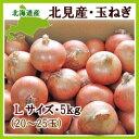 【送料無料】北海道産玉ねぎ(L) 5kg【発送期間 9月上旬〜4月下旬】【常温便】