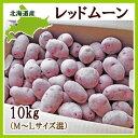 【送料無料】北海道産じゃがいもレッドムーン 10kg【生産元直送・同梱不可】【9月中旬発送開始】