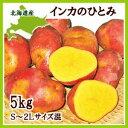 【送料無料】【産直のため同梱不可】北海道産インカのひとみ 5kg【9月中旬発送開始】