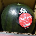 北海道当麻産 でんすけすいか(秀 5L・10〜11kg)×1玉送料無料出荷期間 7月上旬〜8月中旬