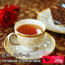 ショッピング紅茶 紅茶 ネパール 2020年 ジュンチヤバリ茶園 Himalayan Imperial Black 20g