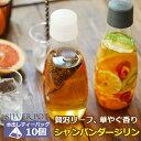 水出し紅茶用ティーバッグ 2.5g×10TB入り シャンパン...
