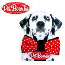 【SUCK UKサックユーケー】ペット用ボウタイpet bow tie おもしろ雑貨おもしろグッズ【メール便OK】 腕時計とおもしろ雑貨のシンシア プレゼント 【あす楽対応可】