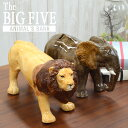 The BIG FIVE ANIMAL'S B...