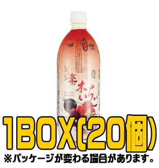 "Josh ""URISOOL"" easy raspberry makgeolli 750 ml ( ■ BOX 20 pieces ) [Korea doburoku]"