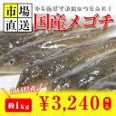 メゴチ・メコチ(1kg)激安