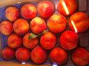 送料無料【訳あり】お中元【贈答ギフト・プレゼント】に濃厚な甘さの【桃】マンゴーピ