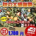 【りんご】【訳あり】【送料無料】《シナノスイート》《シナノゴールド》《あいかの香り》《完熟サンふじ》等、詰め合わせ約2キロ【お試し用】