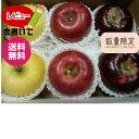 【りんご】【お歳暮ギフト】【送料無料】《シナノゴールド》《ぐんま名月》《あいかの香り》《完熟サンふじ》等、詰め合わせ約2,5キロ【贈答用】