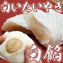 白いたいやき 白あん 【たい焼き たいやき タイヤキ 鯛焼き】和菓子 (お菓子 スイーツ 白いたい焼き 60代 食べ物)