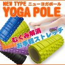 ショート ブラック グリーン オレンジ パープル エクササイズ ストレッチ バランス トレーニング