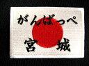 2段日の丸ワッペン【ネコポスOK】【アイロン接着】【応援】【日本】【オーダー】【楽ギフ_名入れ】