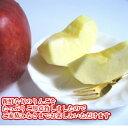 静岡県/長野県産アメーラトマト大きさお任