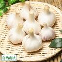 バラ詰め乾燥にんにく M〜Lサイズ 1kg(福岡県 たなかふぁーむ)無農薬野菜・送料無料・産地直送