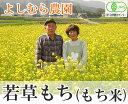 [29年度産] 若草もち(もち米)(白米・玄米) 約1.5kg(福井県 よしむら農園)有機JAS無農薬餅米・送料無料・産地直送・オーガニック