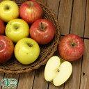 奇跡の有機JASりんご 2色セット 家庭用3kg(青森県 福田秀貞)青森健康りんご・送料無料・産地直送・オーガニック