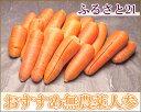 送料無料 ふるさと21おすすめ無農薬にんじん 規格外加工用10kg(ふるさと21)産地直送・お徳用・ジュース用(taisetsu-ninjinb3)