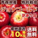 ジョナゴールド 訳あり10kg箱(24〜46個)(青森県 鳴海りんご園)特別栽培 減農薬 りんご 送料無料 産地直送 お徳用 訳あり