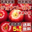 ジョナゴールド 訳あり5kg箱(12〜23個)(青森県 鳴海りんご園)特別栽培 減農薬 りんご 送料無料 産地直送
