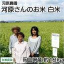 [29年度米] 河原さんのお米 白米・玄米20kg 自然農法無農薬米 (岡山県 河原農園) 産地直送