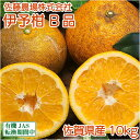 伊予柑(いよかん) B品10kg(佐賀県 佐藤農場株式会社) 無農薬 柑橘 送料無料 産地直送