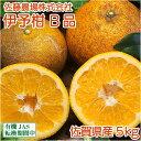 伊予柑(いよかん) B品 5kg(佐賀県 佐藤農場株式会社) 無農薬 柑橘 送料無料 産地直送
