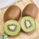 有機キウイフルーツ 10kg 有機JAS (神奈川県 小田原有機農法研究会) 産地直送